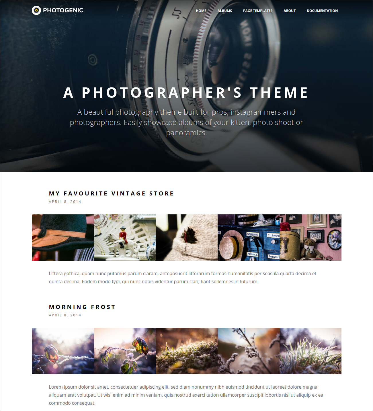 Photogenic WP Photography Theme