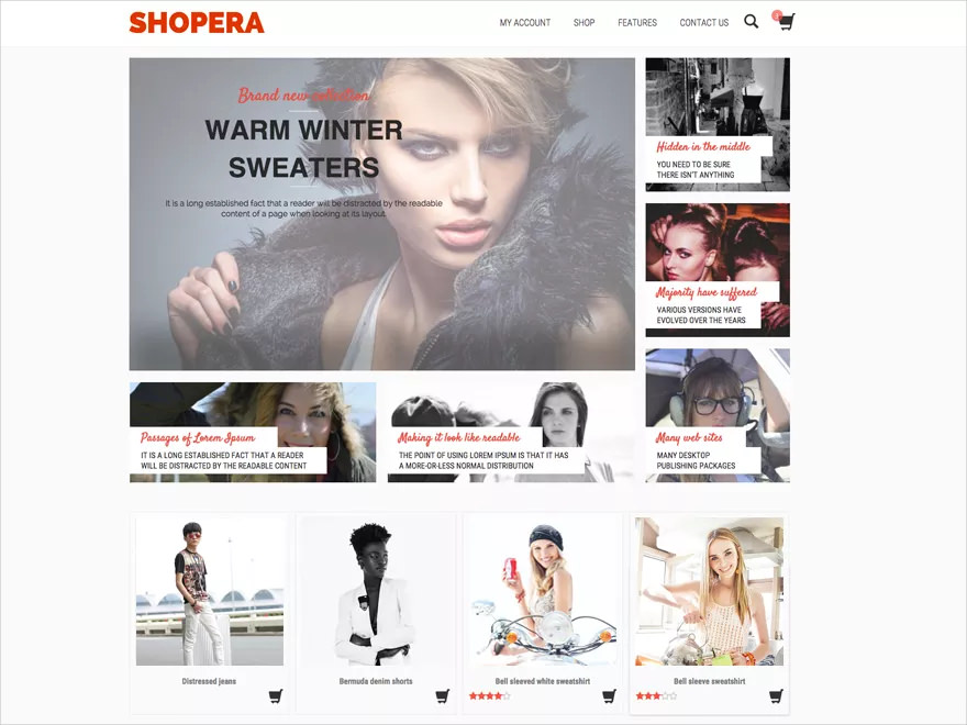 E-shop Theme for WordPress