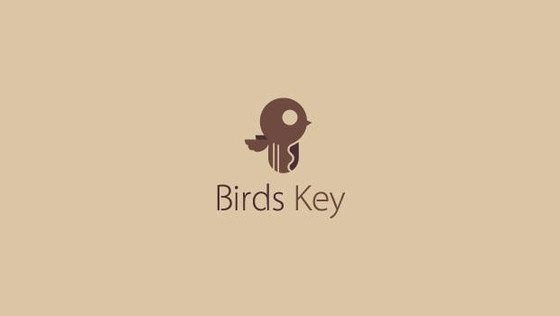 beautiful bird with key logo