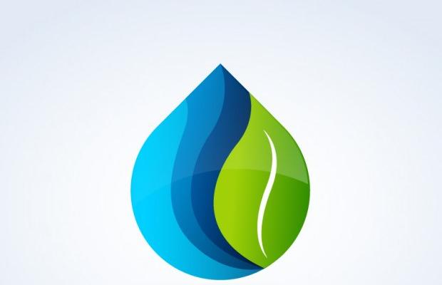 Beautiful Nature Leaf Logo