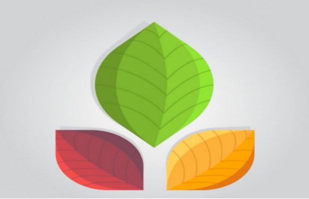 abstract leaves logo design