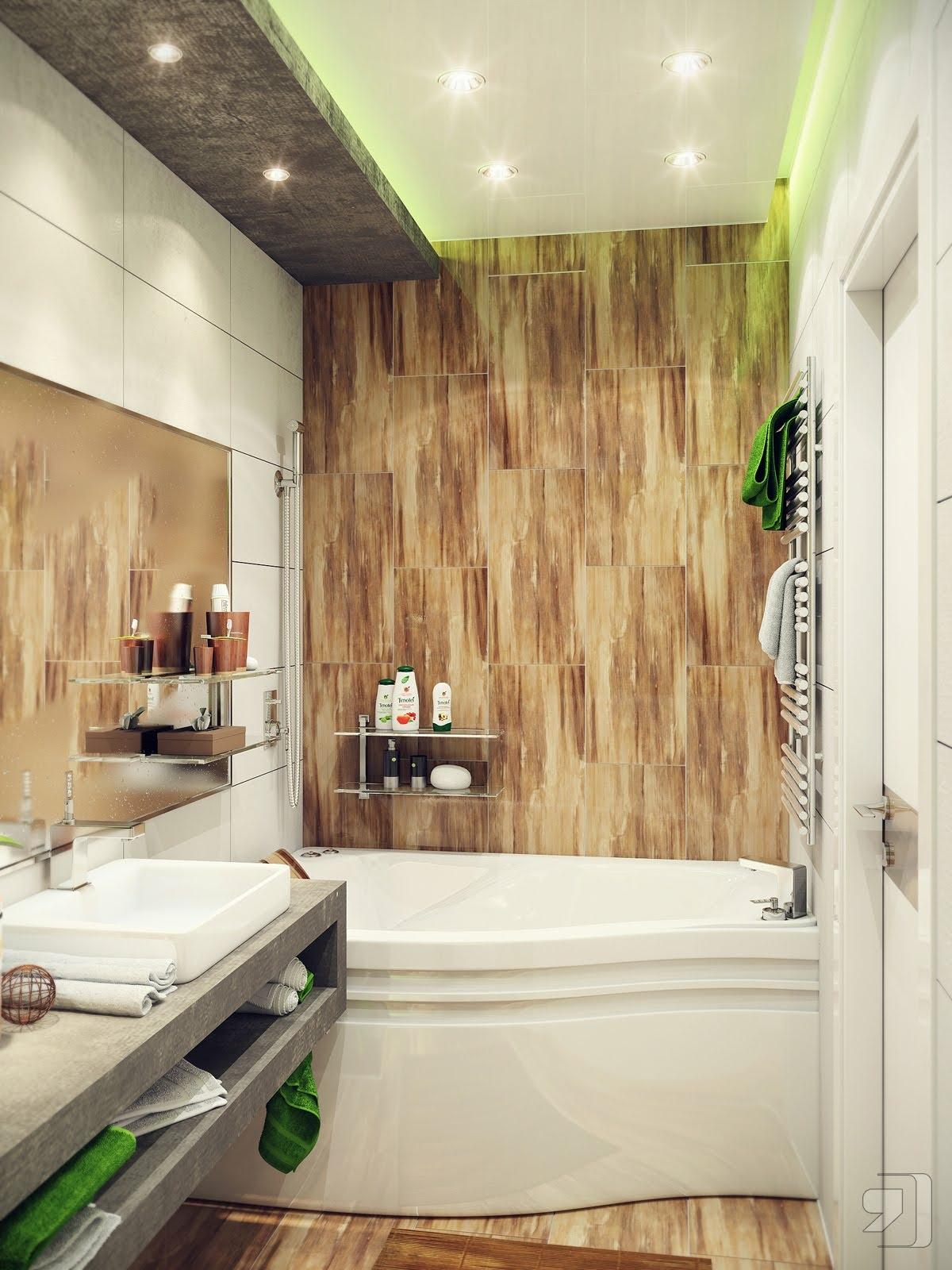 Wooden Wall Interior Bathroom Model