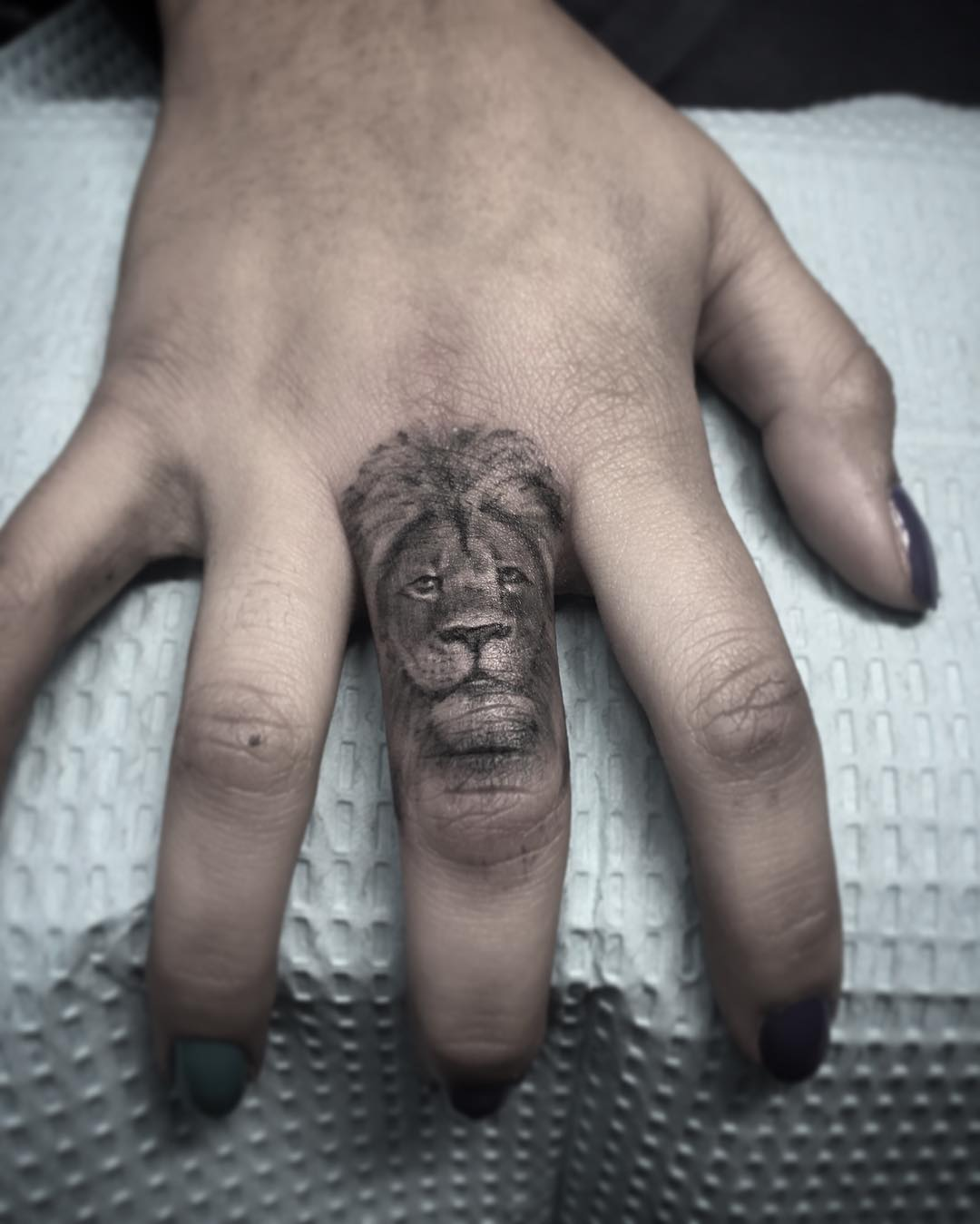 Lion Portrait on Middle Finger