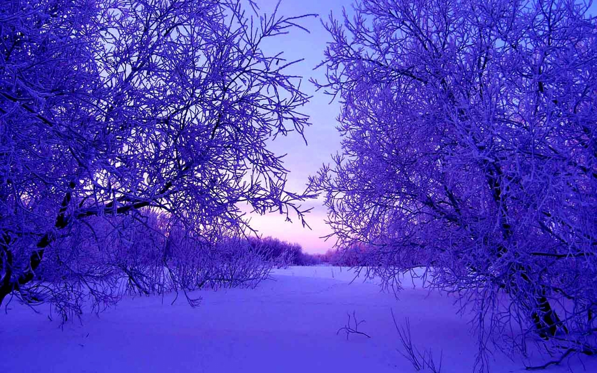 winter evening waallpaper