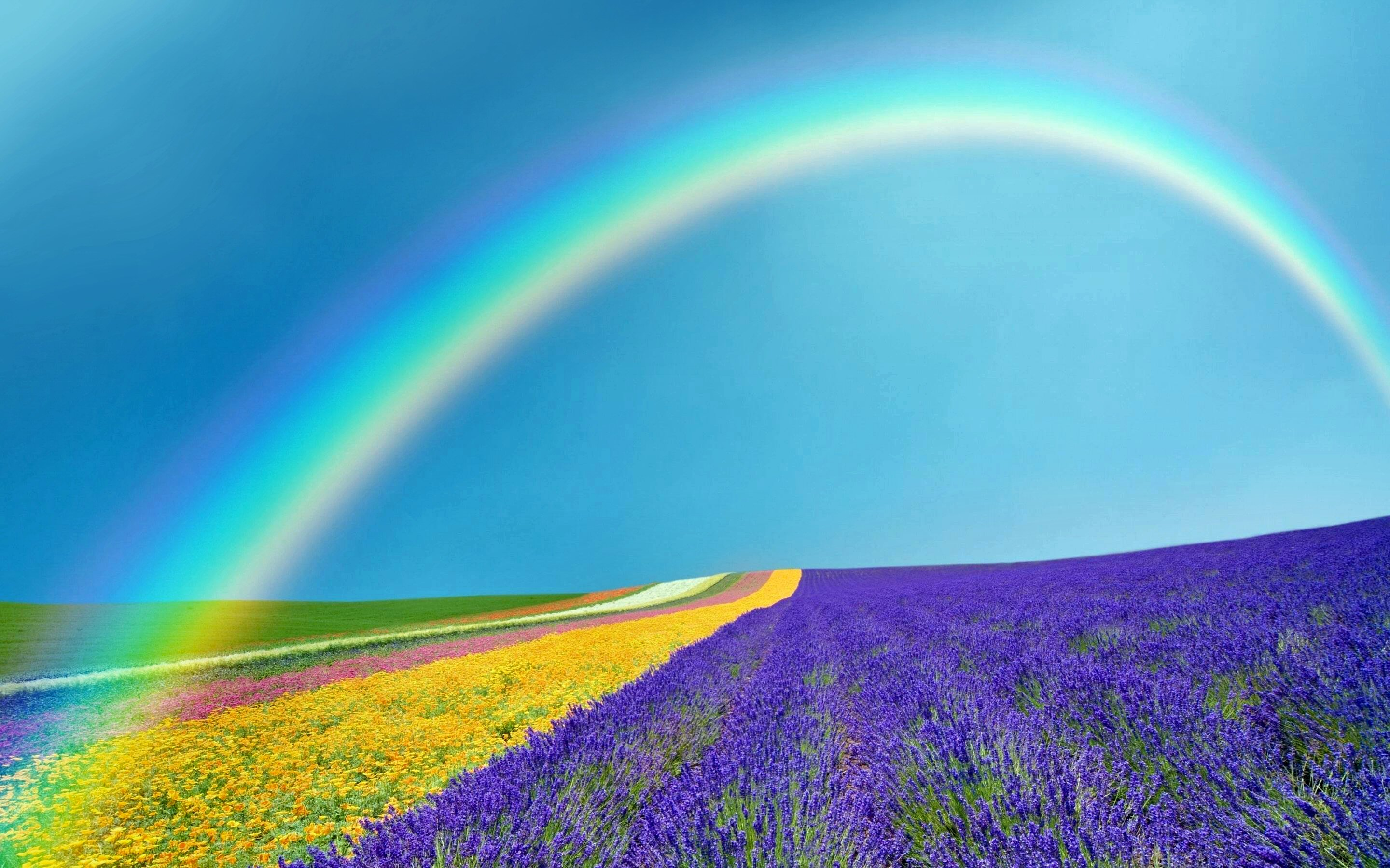 Spring Rainbow Background