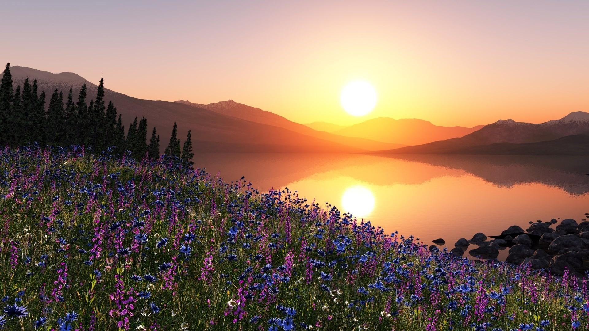 Scenic Sunset Image