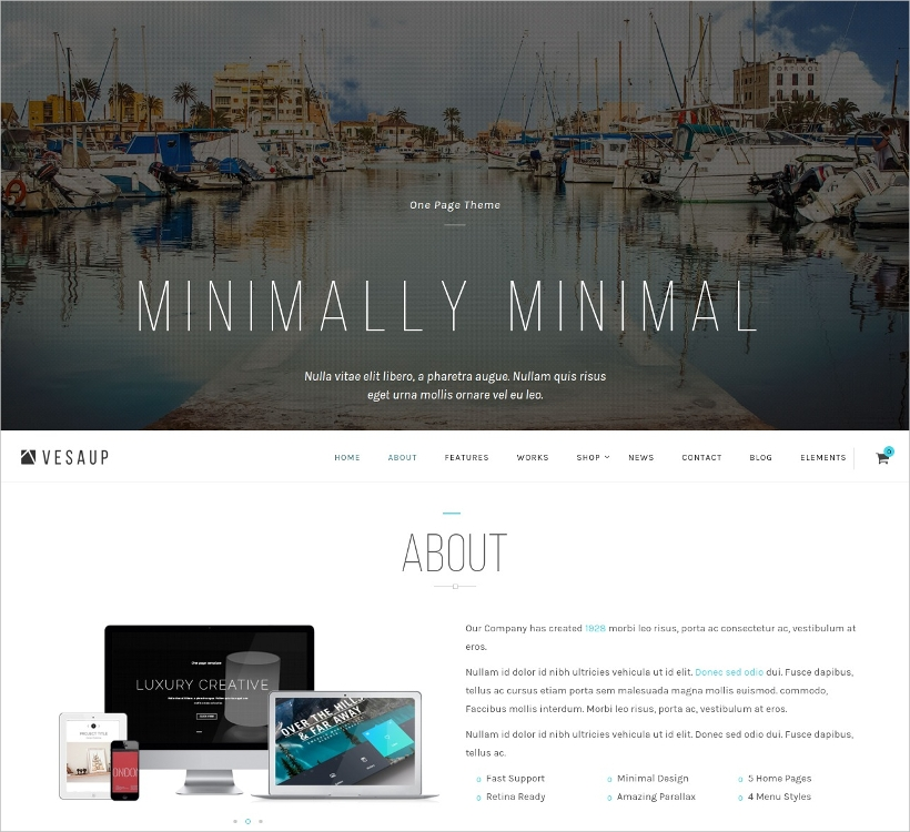 One Page Slider WordPress Theme