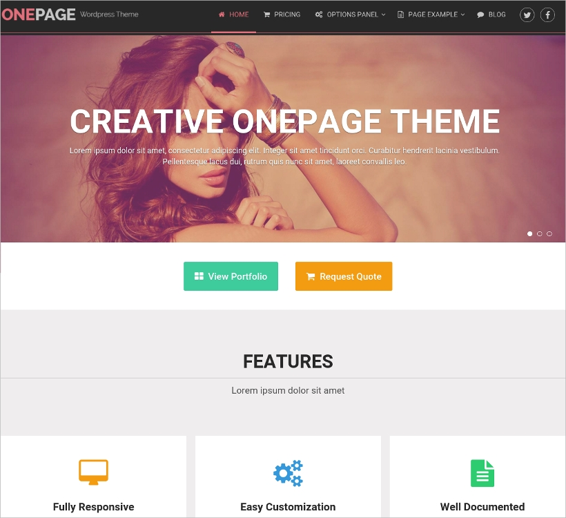 Unique Portfolio and Business WordPress Theme