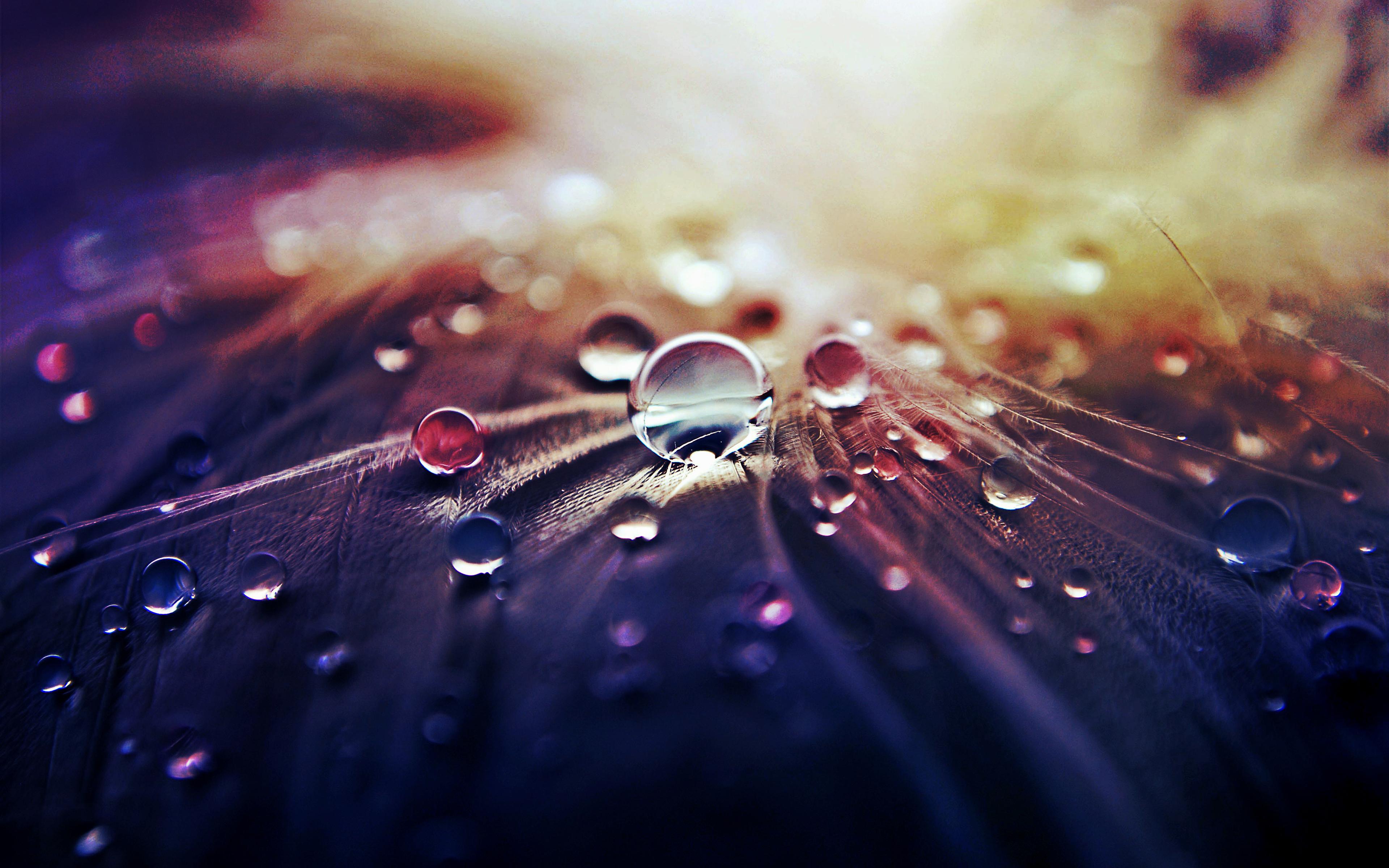 Water Drop HD Image