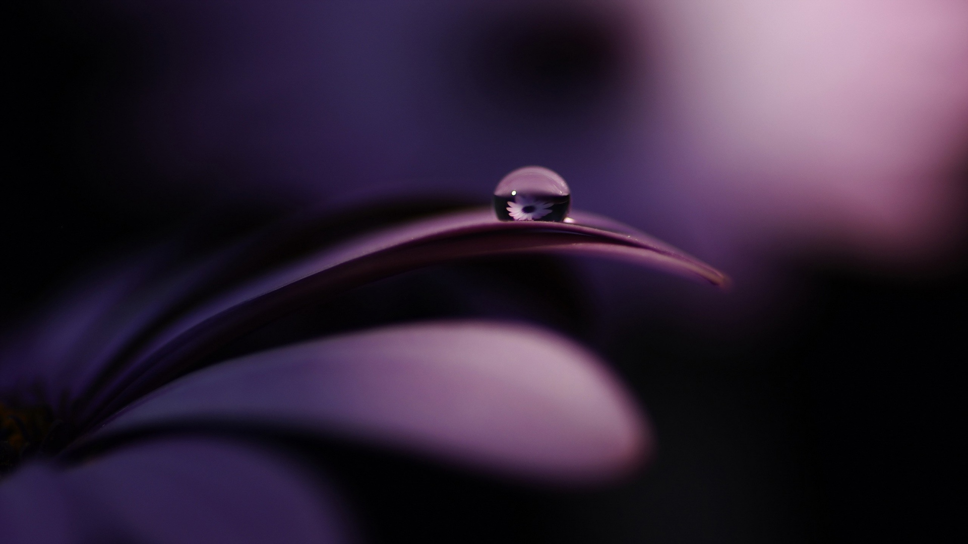 Dark Water Drop Wallpaper