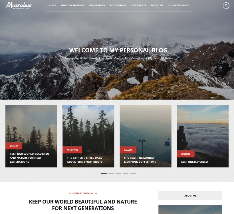 WordPress Theme for Blog & Magazine Websites