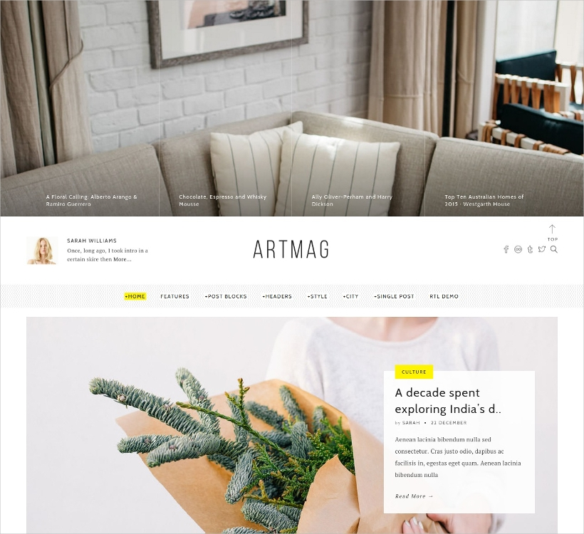 artmag clean wordpress blog magazine theme1