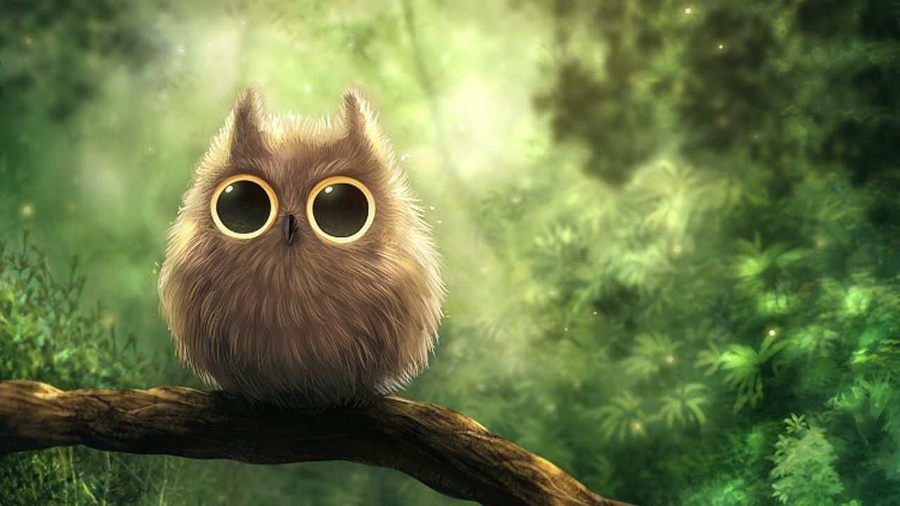 Owl Wallpaper for Kids