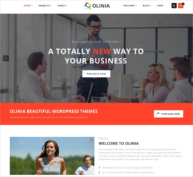 Multipurpose Responsive Business Theme