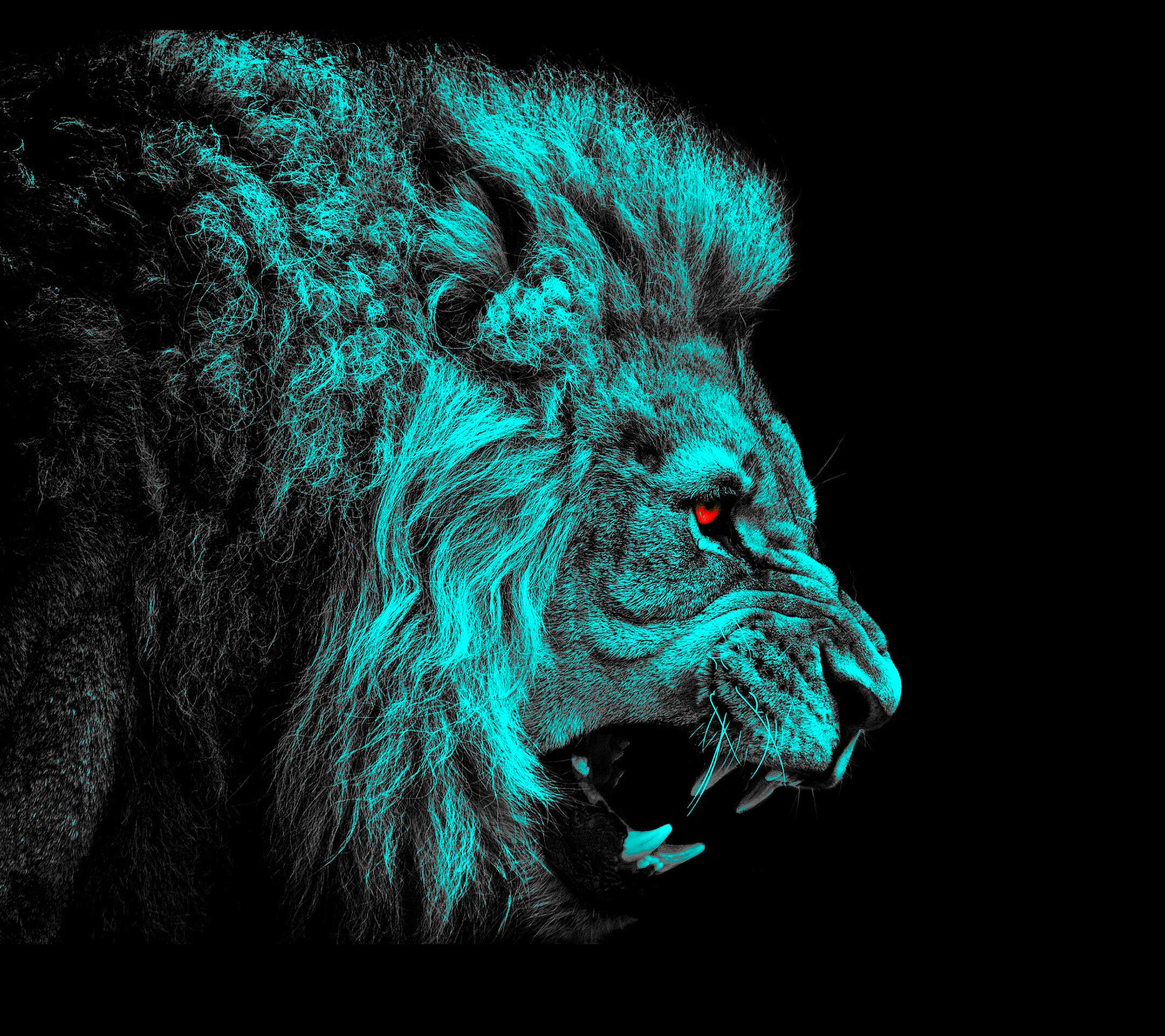 Angry Lion Backgrounds