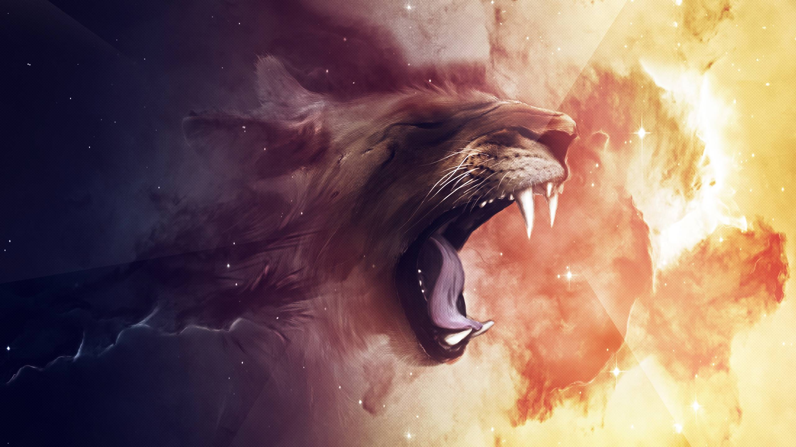 Creative Lion Wallpapers