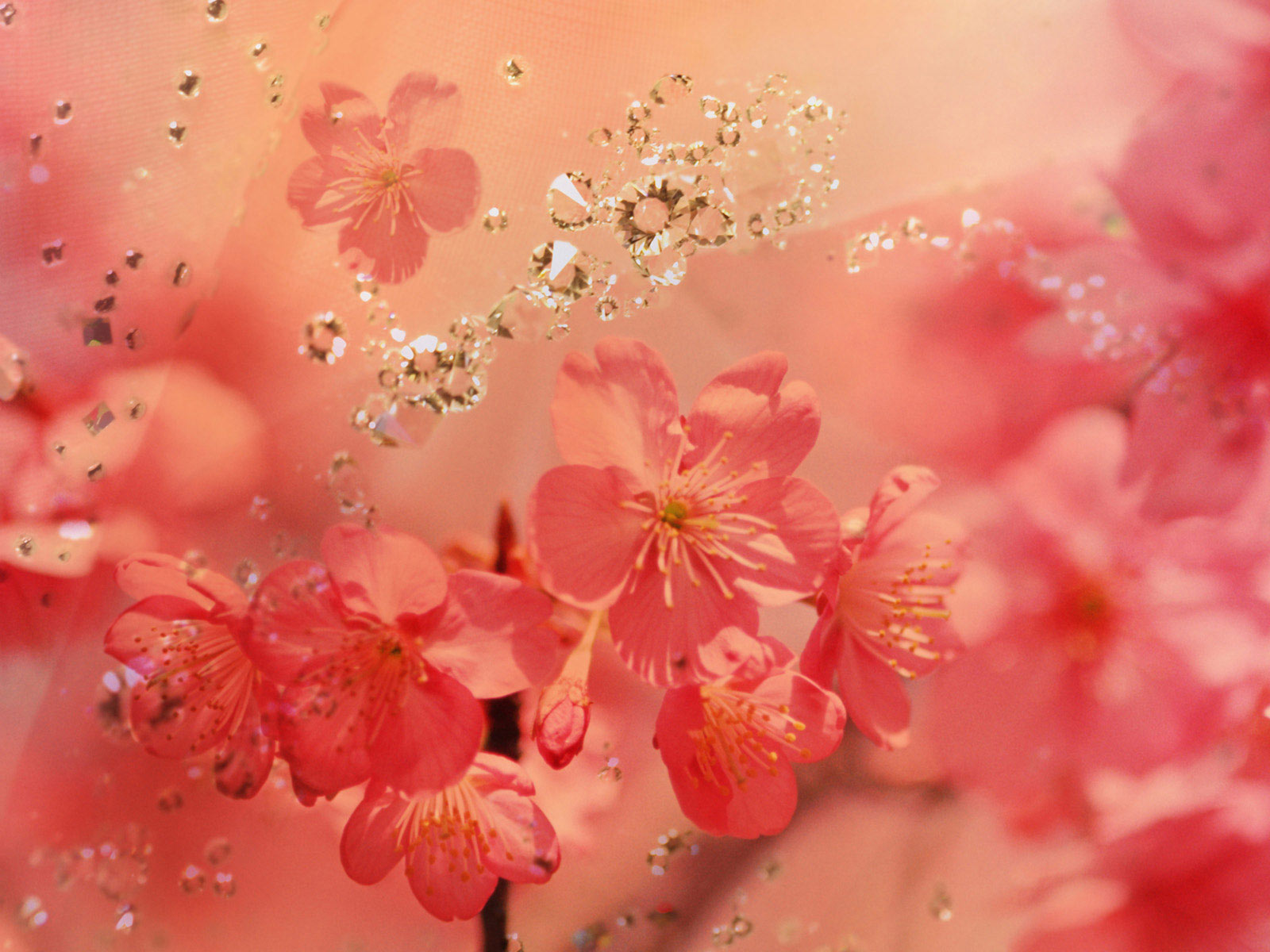 flower background diamond wallpapers