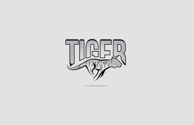 simple tiger logo
