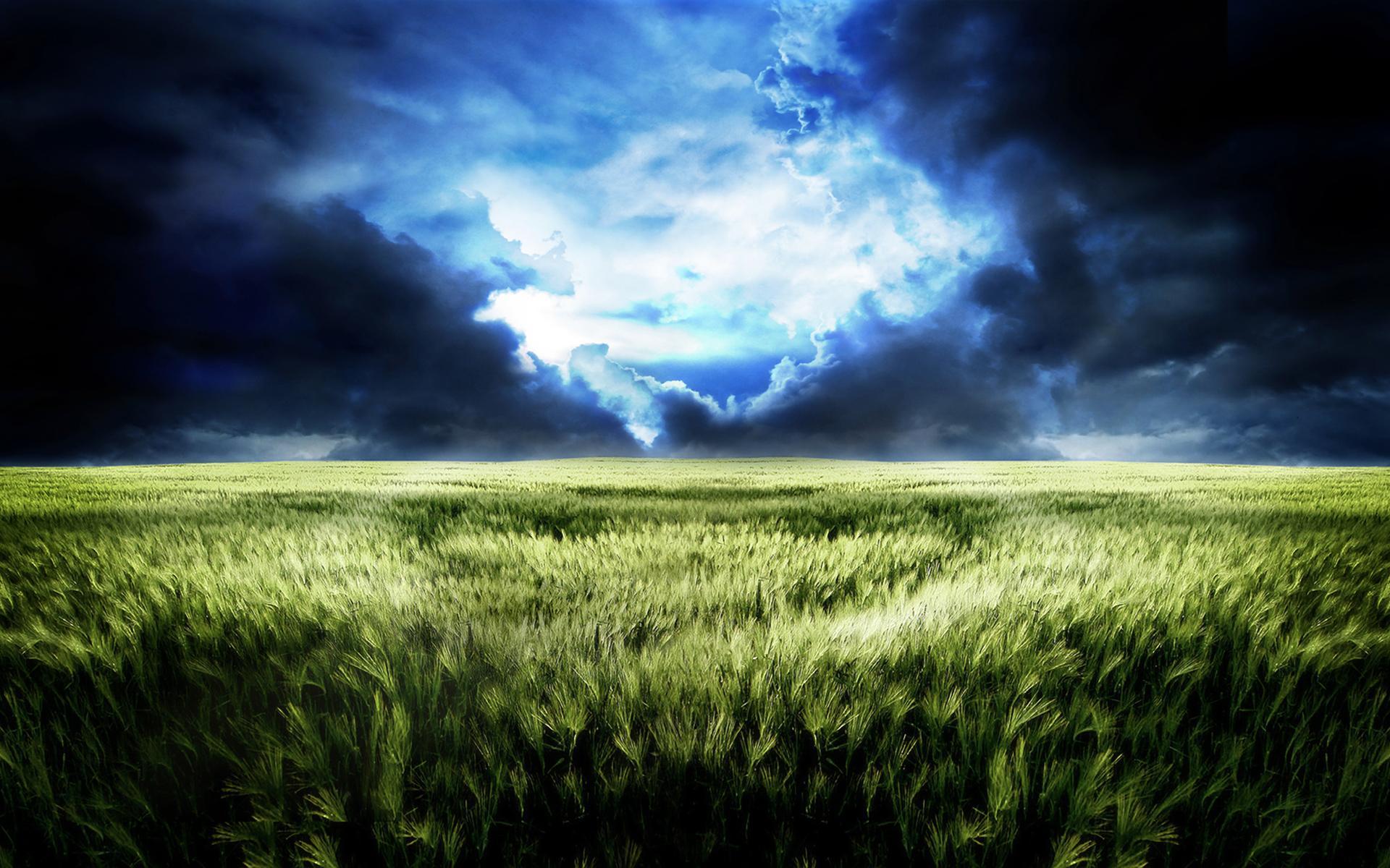 vast field landscape