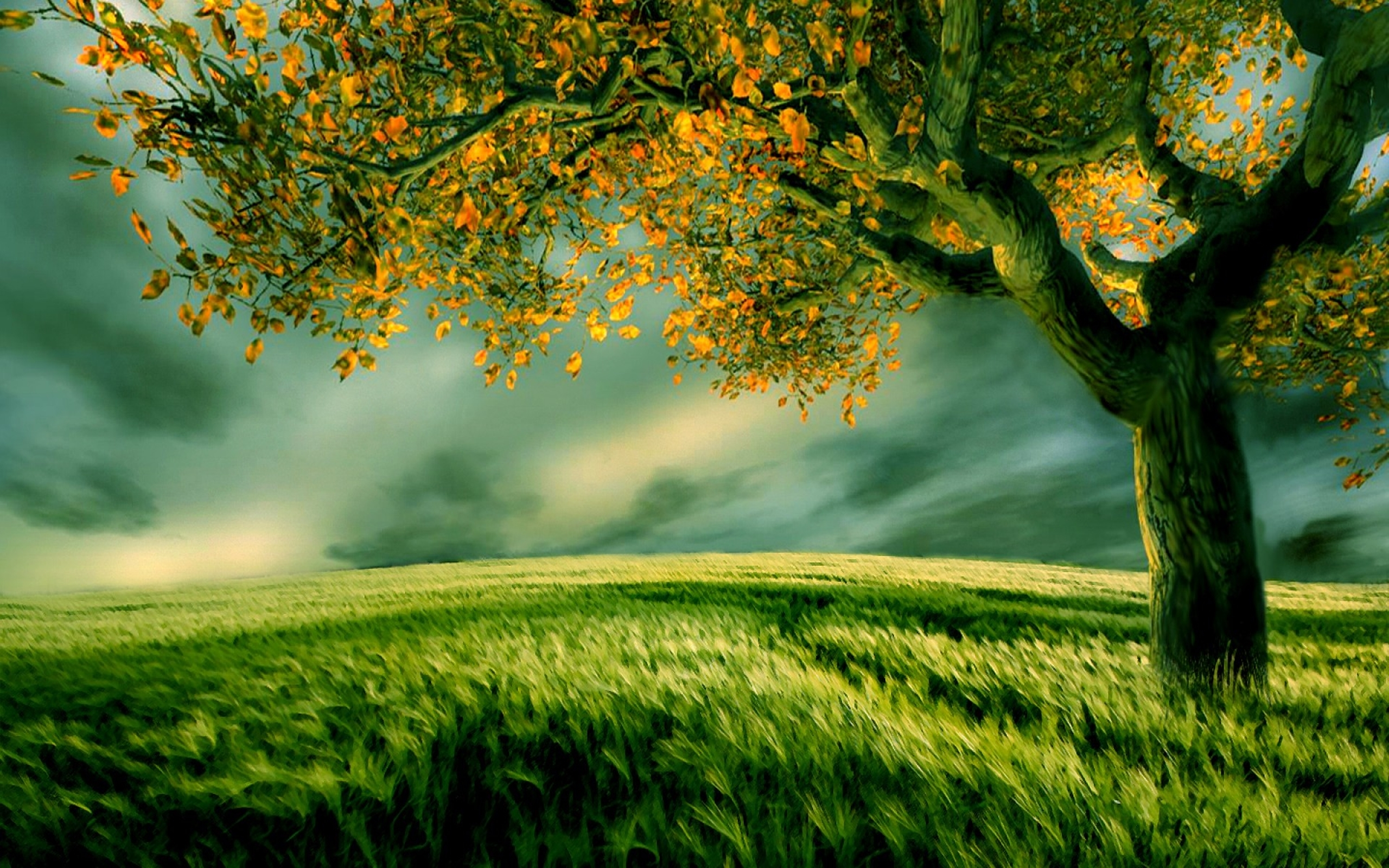 Artistic Vast Field Wallpaper