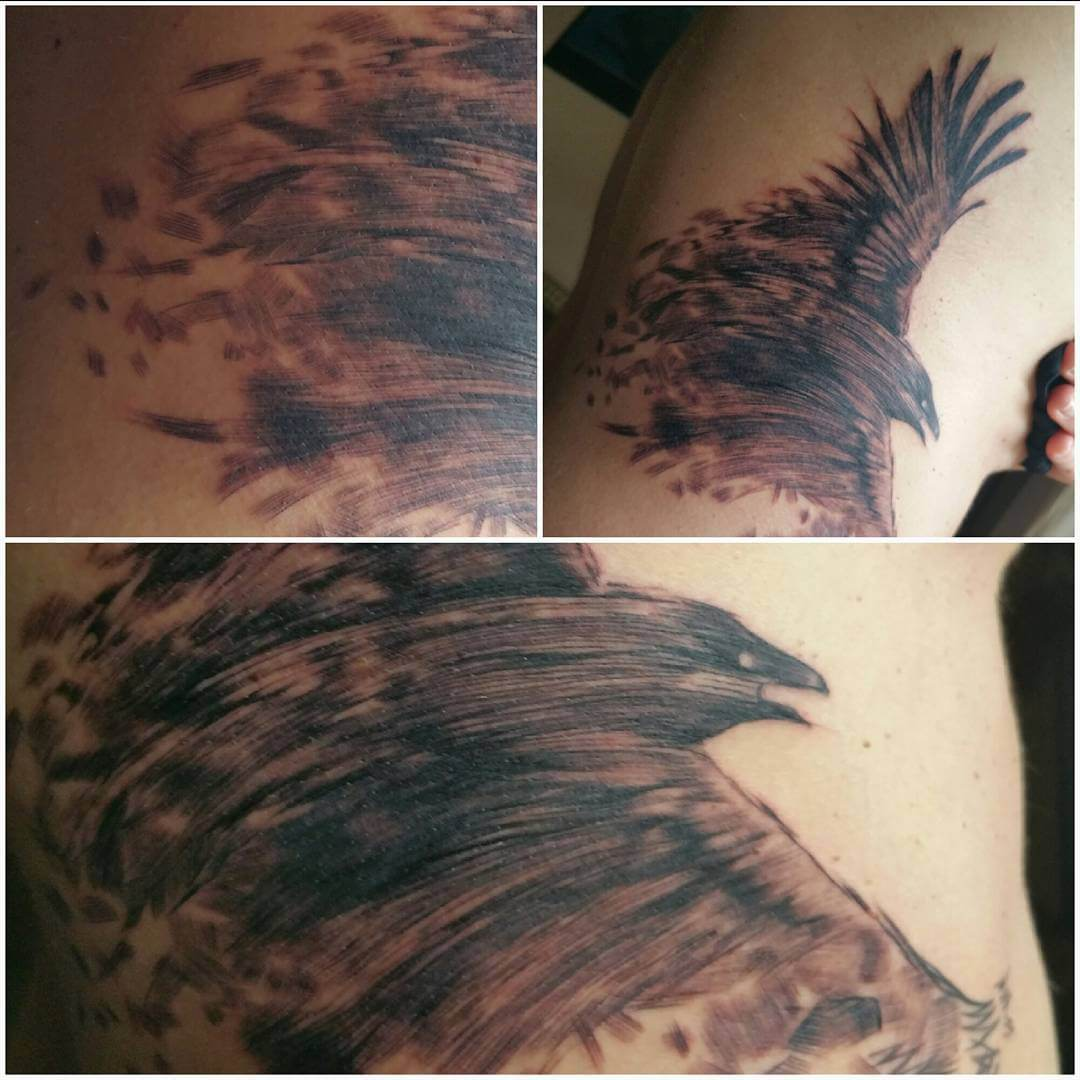 creative crow tattoo design