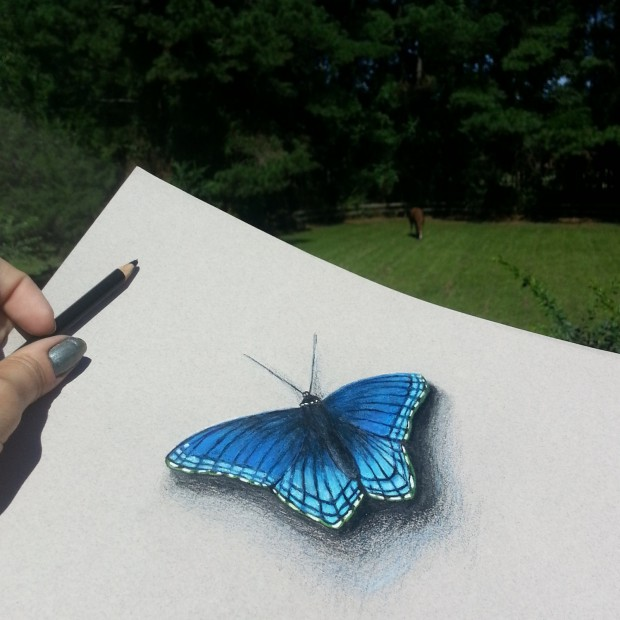 Blue Butterfly Original Colored Pencil and Ink