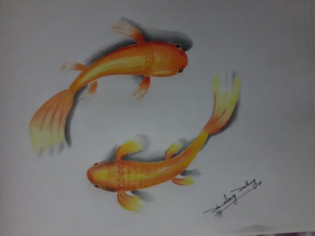 3d pencil art the gold fish e1460455026853