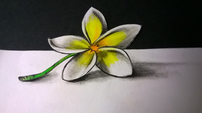 Hand drawing of flower looks 3d