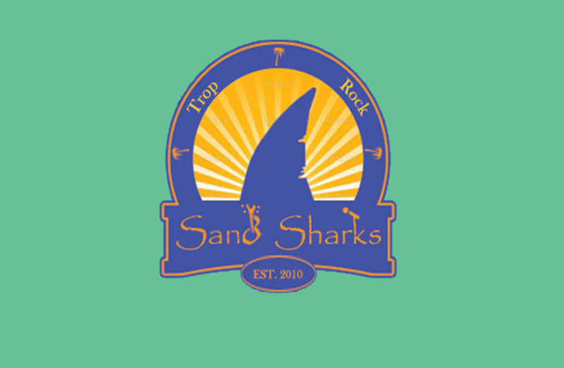 Shark Logo Illustration