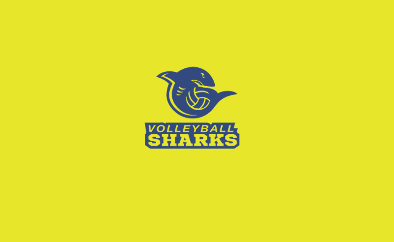 Shark Logo for Creative Services