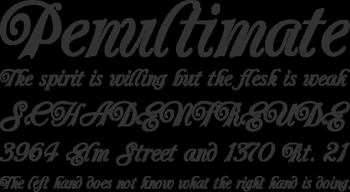 elegant calligraphic font