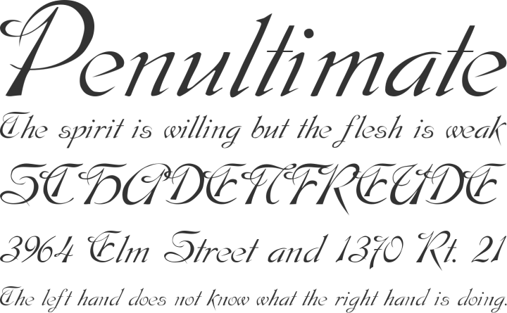 formal elegant fonts