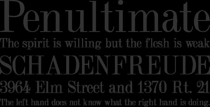 elegant oblique fonts