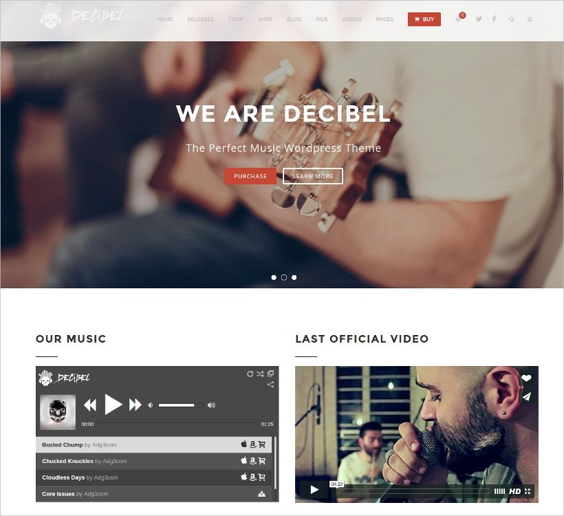 professional music wp theme