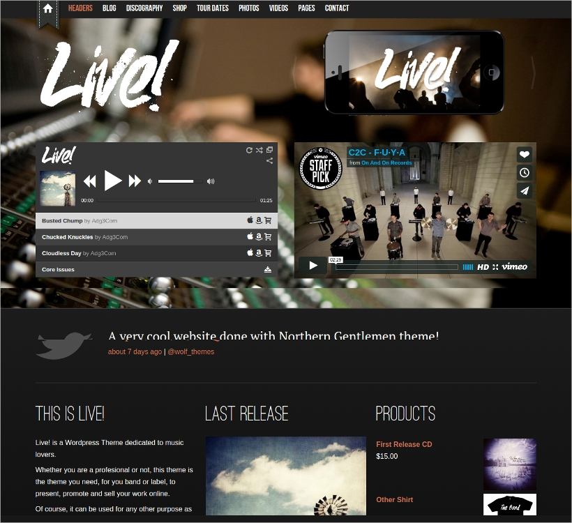 professional wordpress musician theme