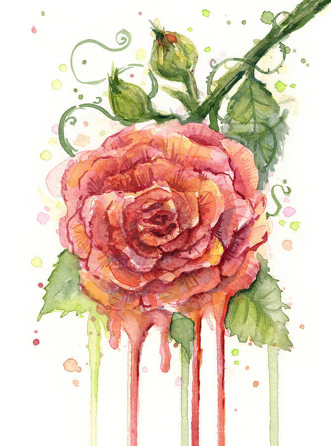 Red Rose Watercolor Paintings