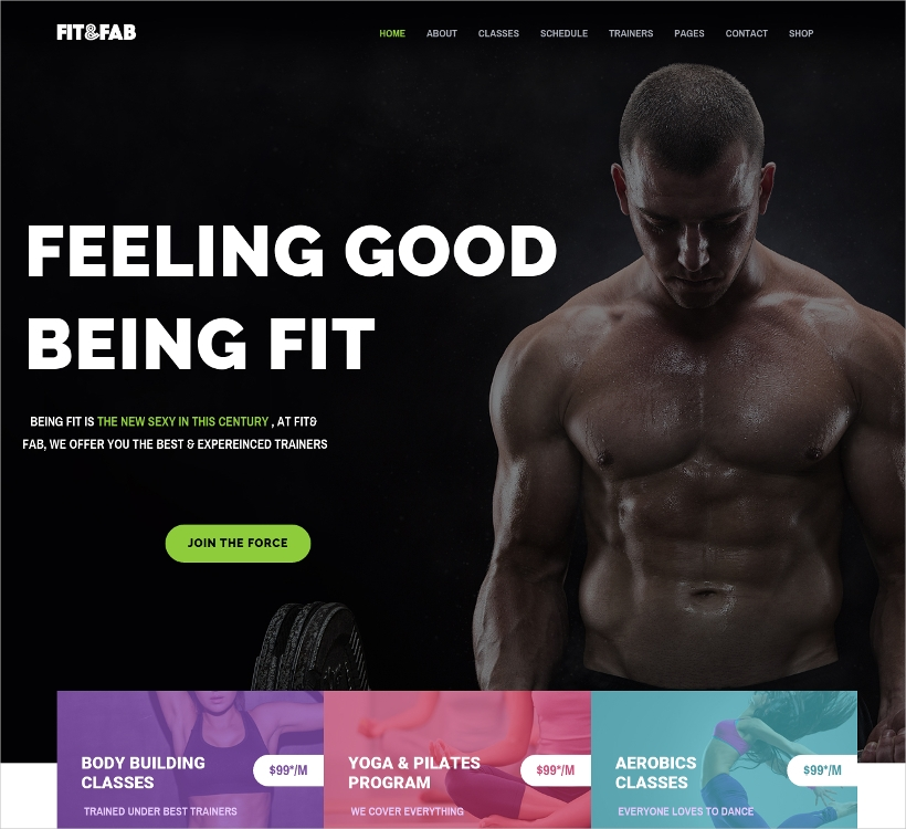 Aerobic and Fitness WordPress Theme