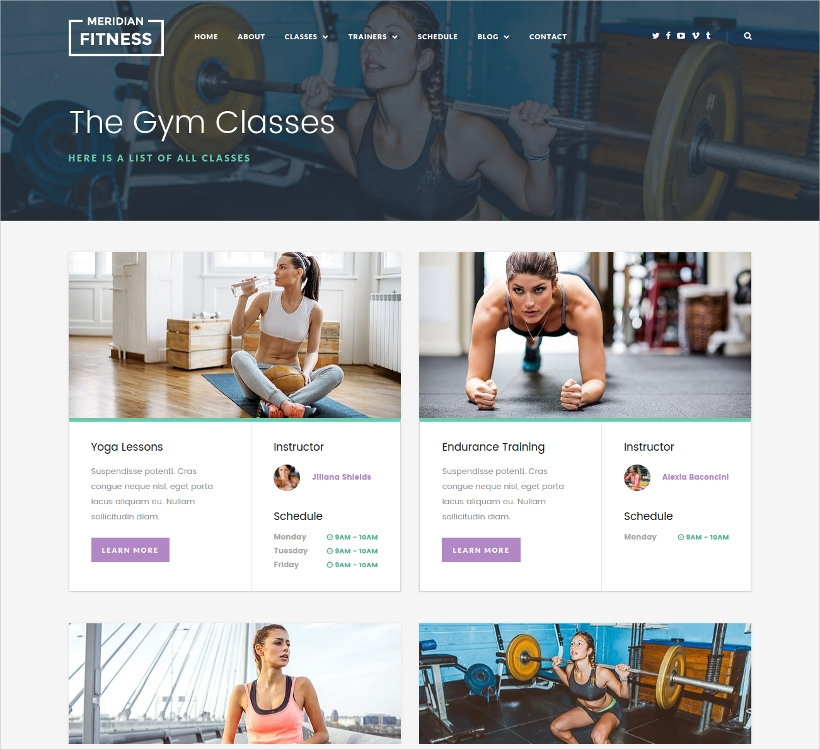 Meridian WP Fitness Theme