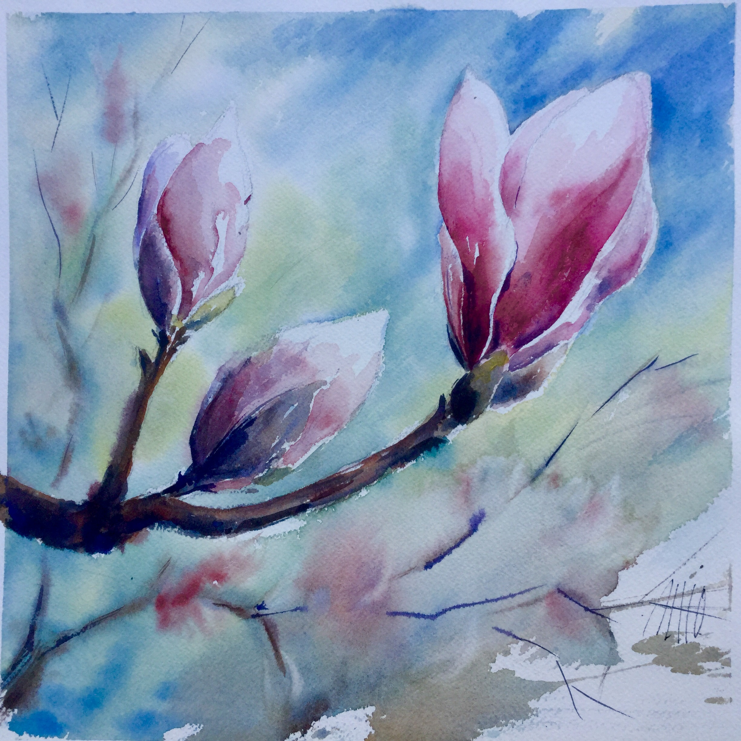 beautiful flower watercolor painting