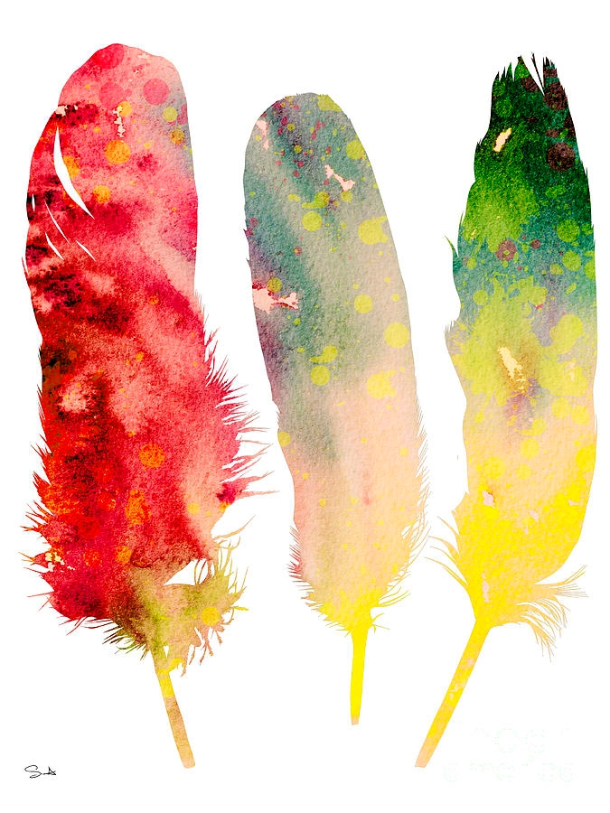 watercolor painting of feathers