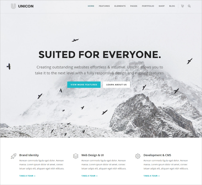 Agency WordPress Website Theme