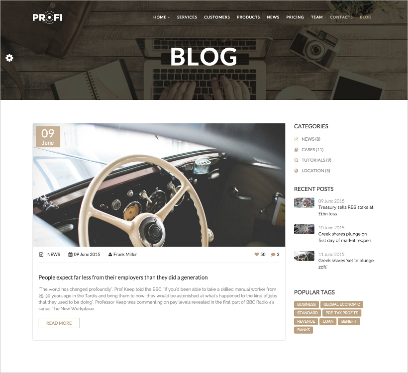 profi business wp themes