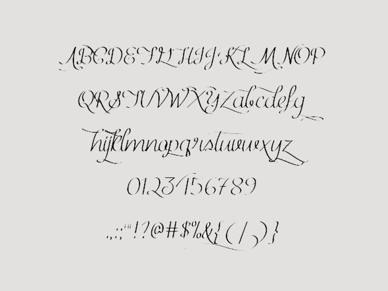 Calligraphy Ribbon Fonts