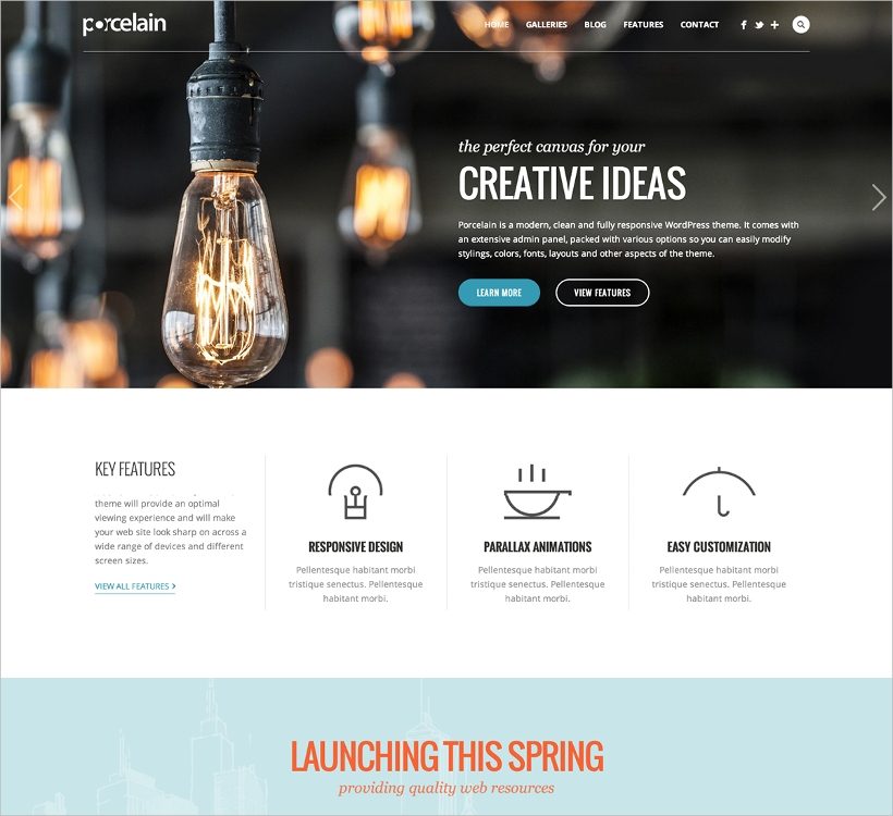 responsive multi purpose theme