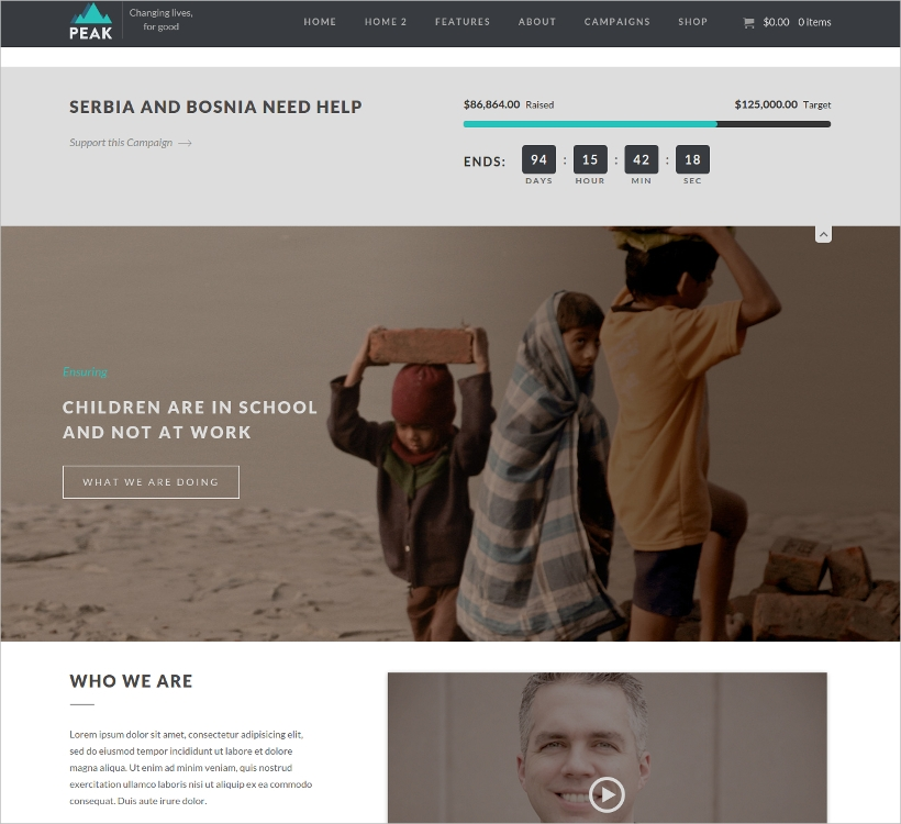 Charity Non-Profit Website Template