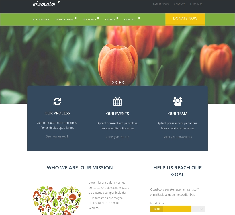 Professional Non-Profit Website Template