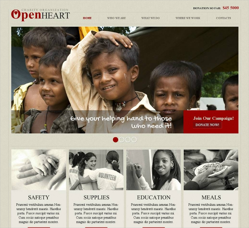 Responsive Non-Profit Website Template