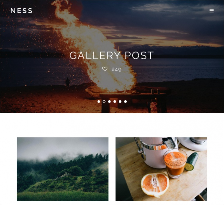 Minimalist Photo Magazine Website Theme