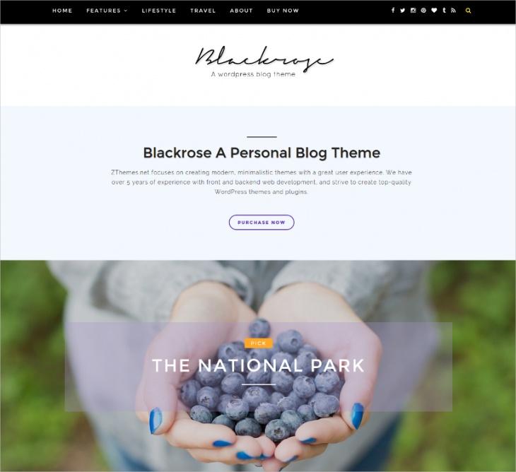 photographers blog wordpress theme