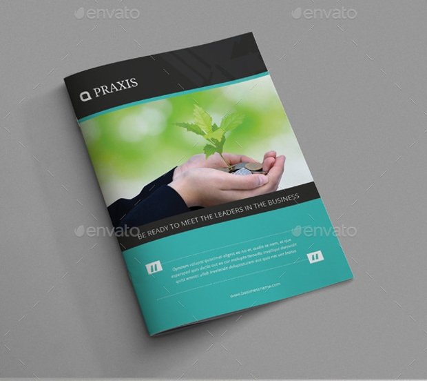 Beautiful Business Brochure Design